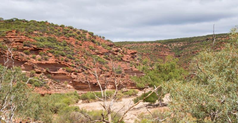 Скалы в ущелье реки Murchison стоковые фото