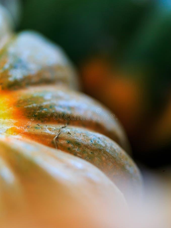 Сквош Butternut вверх закрывает на рынке в естественном свете стоковые фото