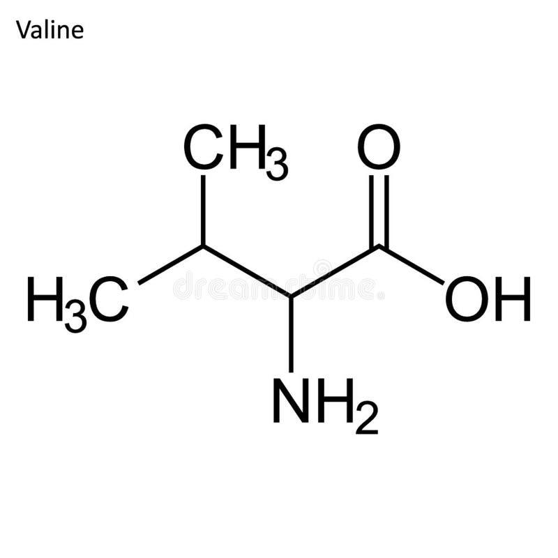 Скелетная формула валина бесплатная иллюстрация