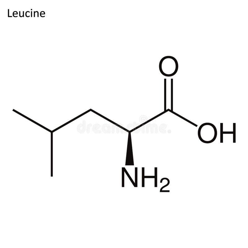 Скелетная формула лейцина иллюстрация штока