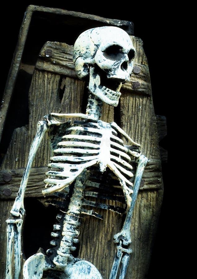 скелет гроба кричащий стоковая фотография