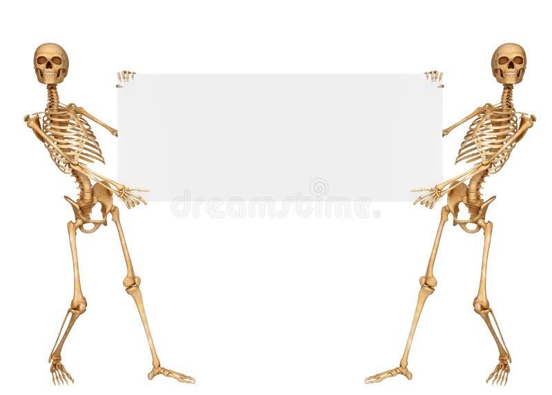 Скелет держа знак с обеими руками иллюстрация вектора