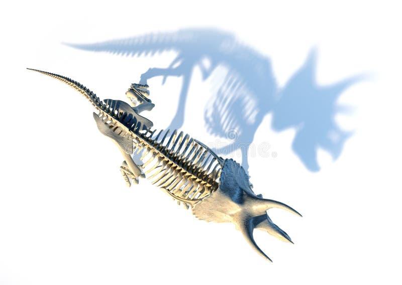 Скелет трицератопса осмотренный от верхней части иллюстрация вектора