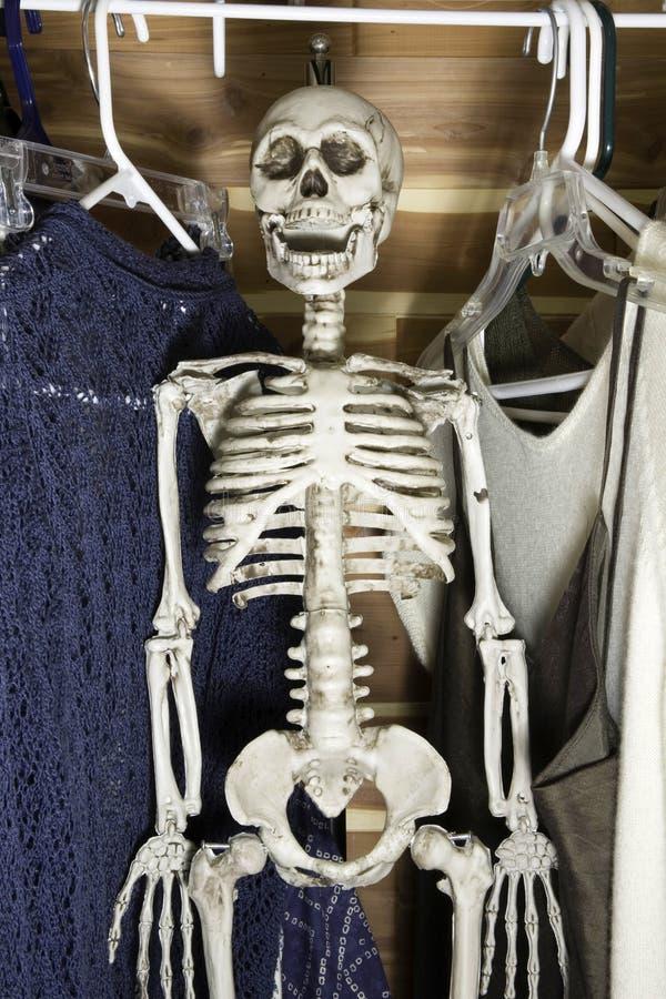 скелет шкафа стоковые фотографии rf