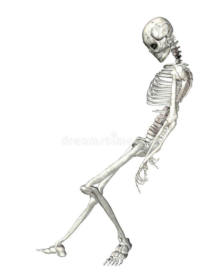 скелет 2 бесплатная иллюстрация