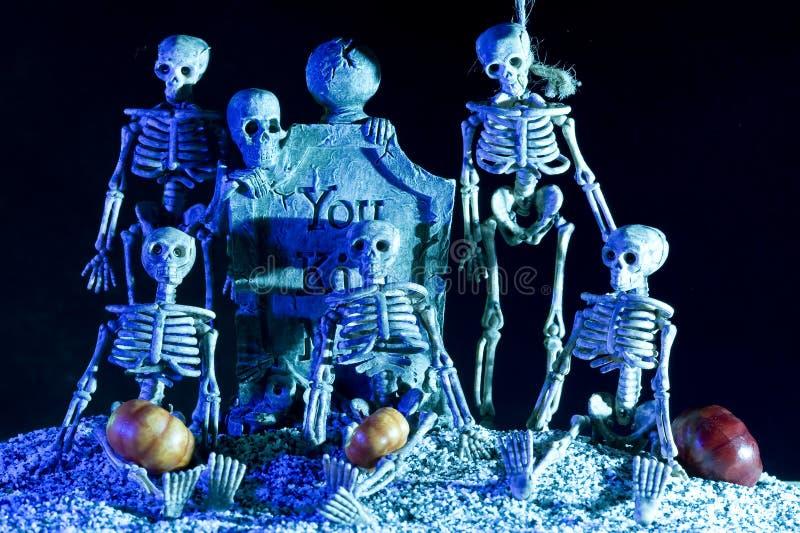 Скелет Halloween стоковое изображение rf