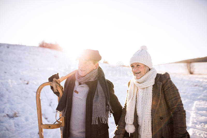 Скелетон нося красивых старших пар, солнечный зимний день стоковая фотография rf