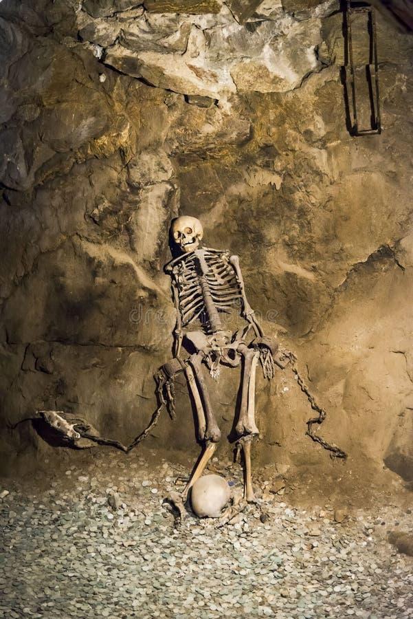 Скелет в подземелье стоковые фото