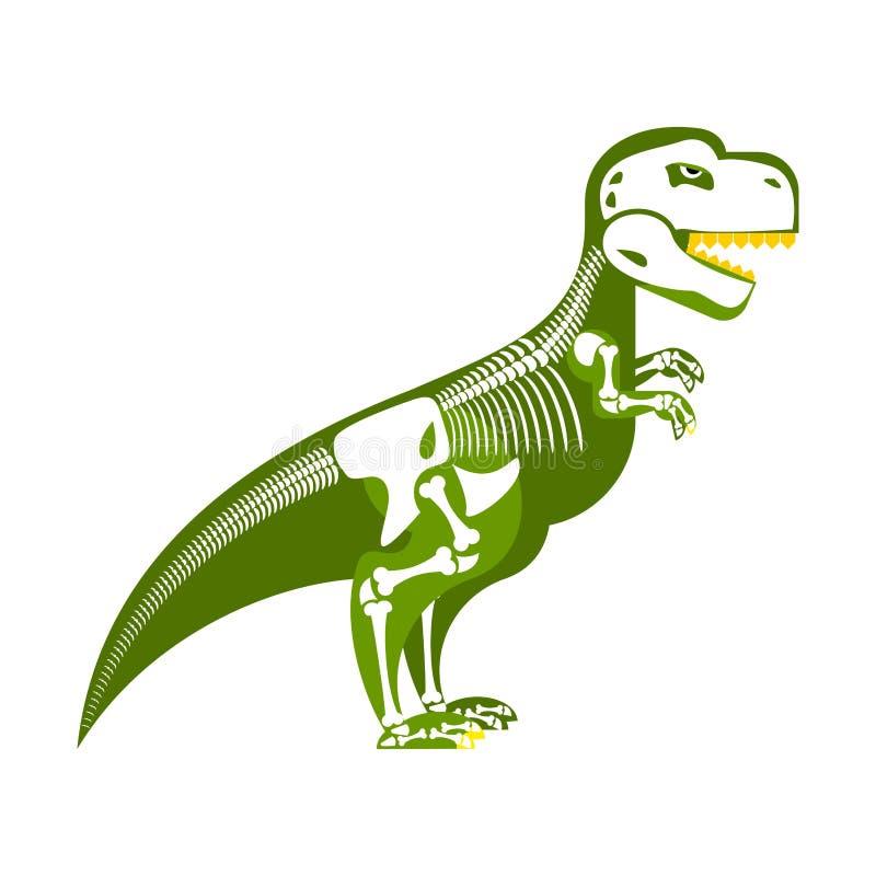 Скелет динозавра Косточка вверх на моем теле T-Rex и череп иллюстрация вектора