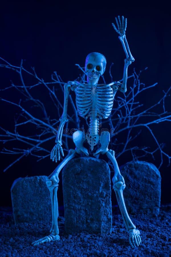 Скелет сидя на надгробной плите стоковые изображения rf