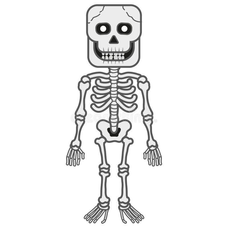 Скелет хеллоуина стоковые изображения