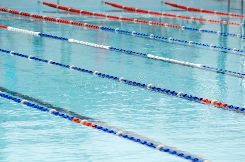 скложите заплывание вместе стоковые изображения rf