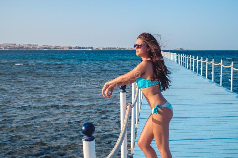 Склонность девушки на загородке дока и смотреть заход солнца стоковая фотография rf