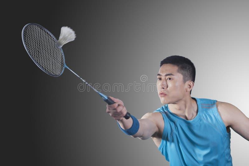 Сконцентрированный молодой человек играя бадминтон, ударяя стоковые изображения rf
