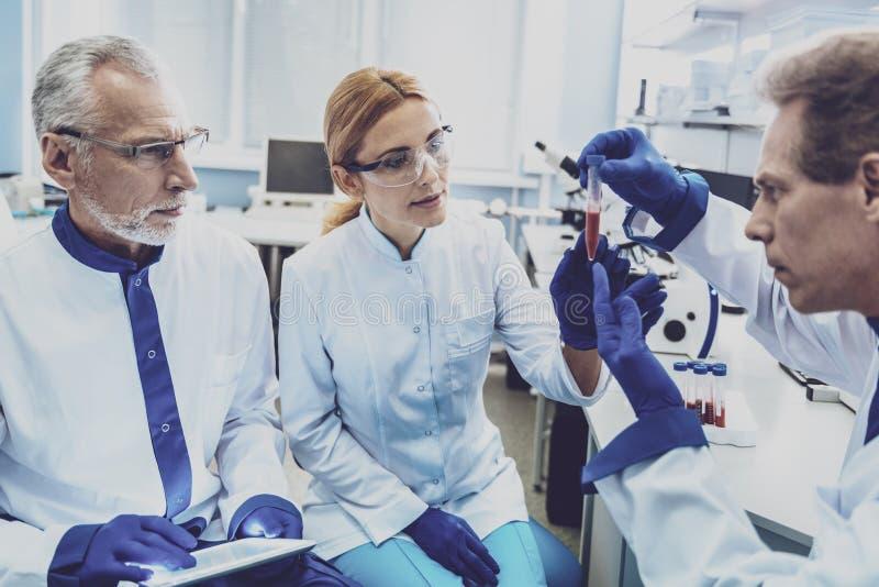 Сконцентрированный химический реактив исследователя рассматривая стоковые изображения