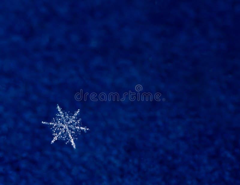 скопируйте космос снежка макроса хлопь естественный стоковые фотографии rf
