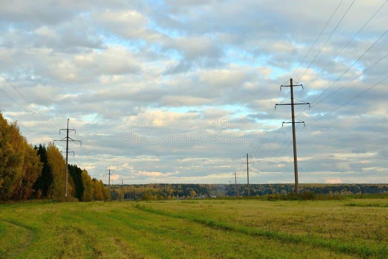 Скошенное поле в осени, поддержках линии электропередач, лесе желтого зеленого цвета, зоне Kostroma, России стоковое фото rf