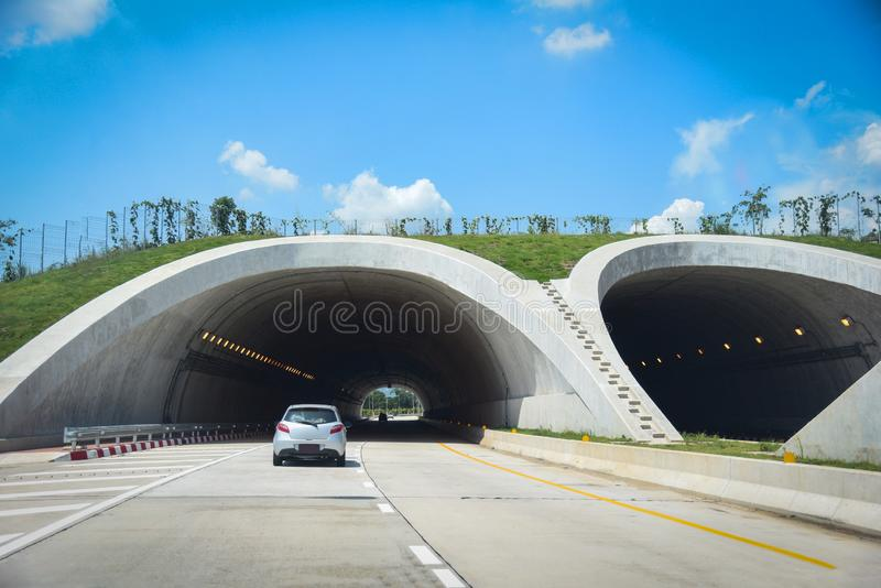 Скрещивание живой природы сверх на шоссе в скорости автомобиля движения тоннеля дороги леса на улице - мосте для животных над шос стоковая фотография rf