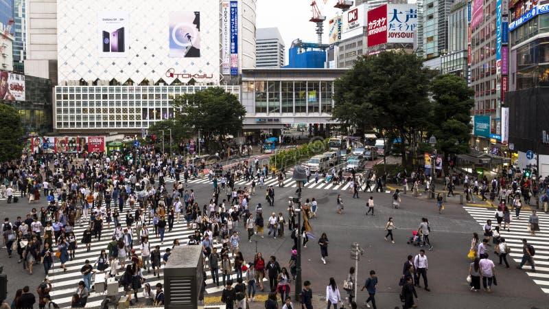 Скрещивание Японии, Токио, Shibuya, главная реклама и деловый центр, оно расквартировывает 2 самых занятых железнодорожного вокза стоковое изображение rf