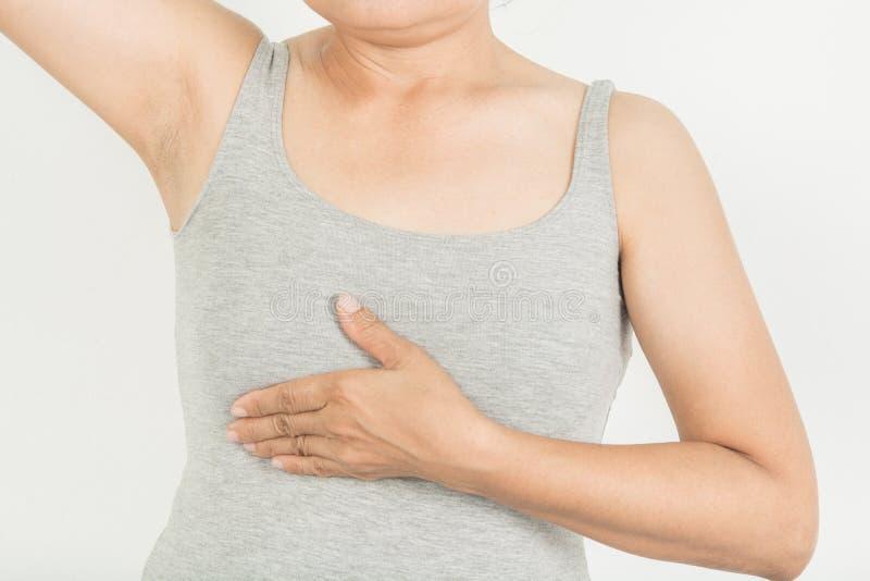 Скрининг груди в женщинах стоковая фотография rf