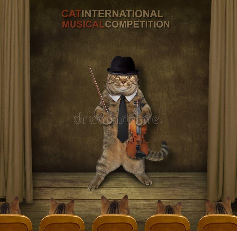 Скрипач кота на этапе стоковые фотографии rf