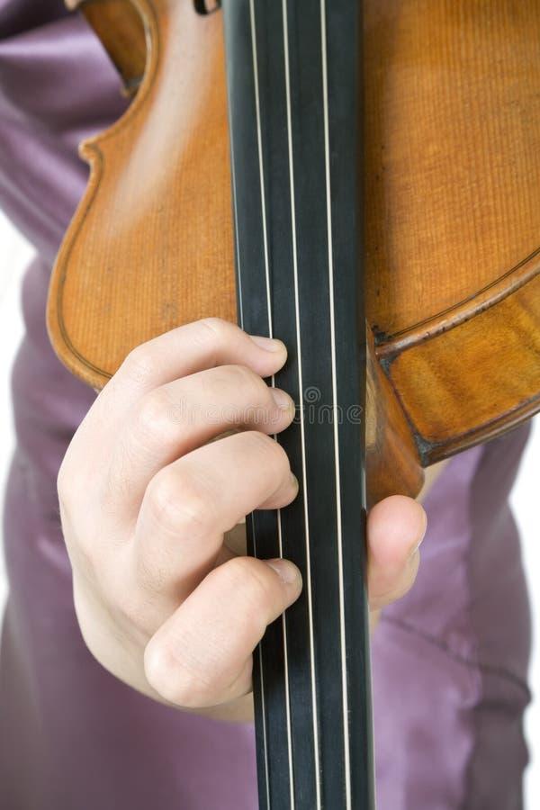 скрипач 3 крупных планов стоковая фотография rf