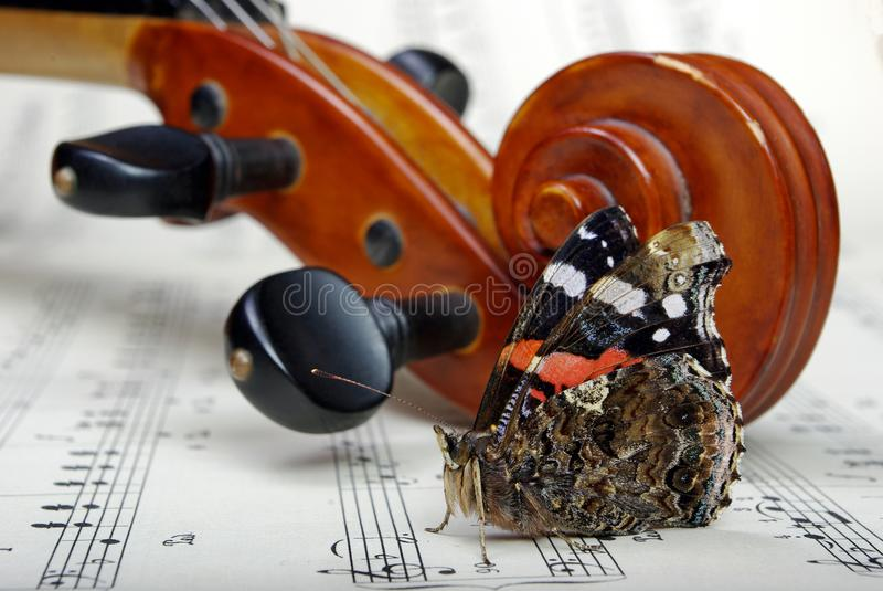 скрипка листа нот Красивейшая бабочка стоковое фото