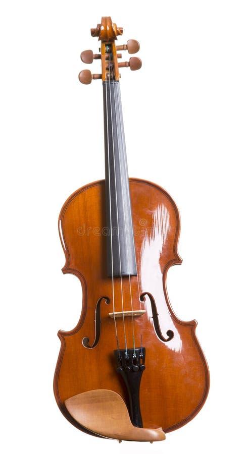 Скрипка над белизной стоковые изображения