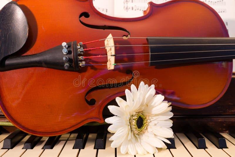 Скрипка, рояль, и белый цветок стоковые фото