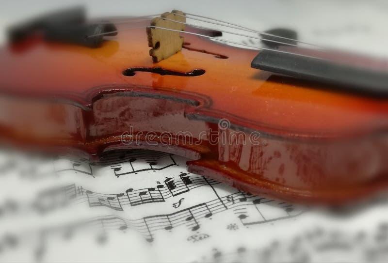 Скрипка instrumente музыки стоковые изображения