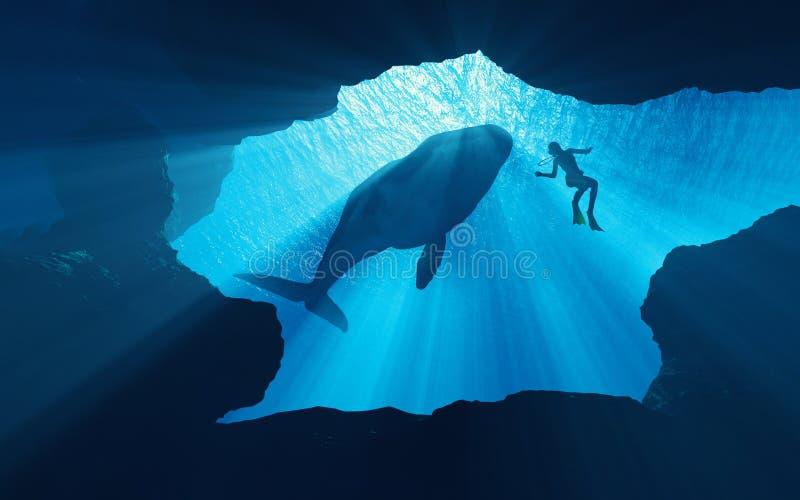 скуба водолазов подводное иллюстрация штока