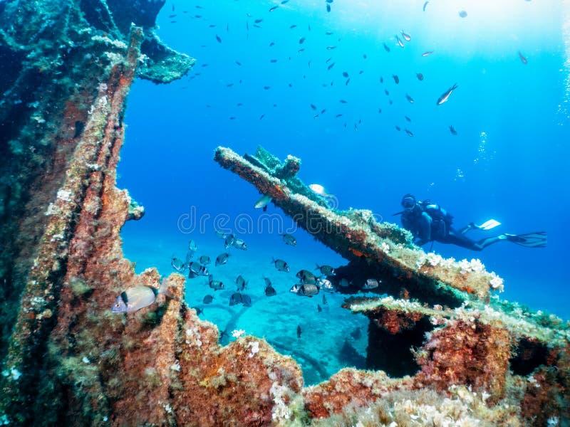 Скуба-водолаз изучает затонувшее кораблекрушение стоковое фото