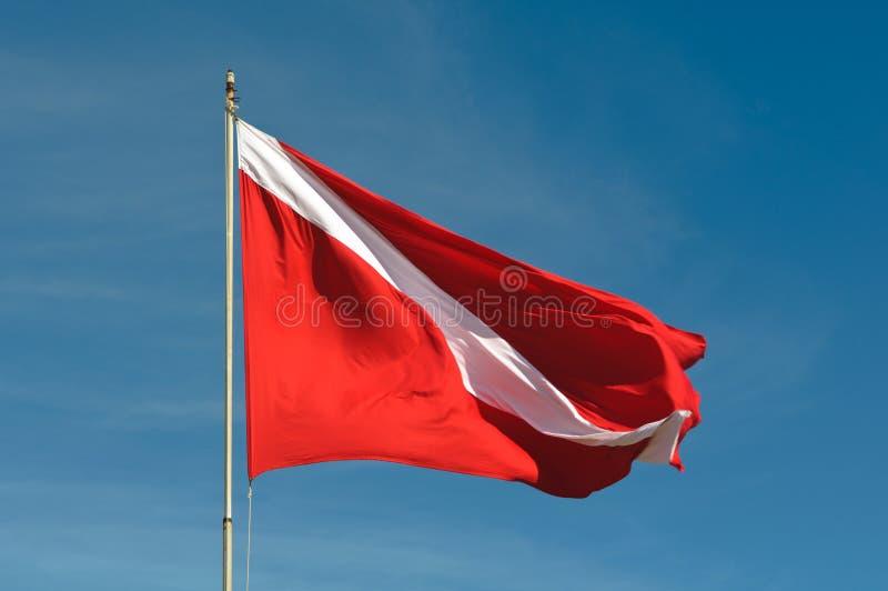 скуба флага пикирования стоковые изображения rf