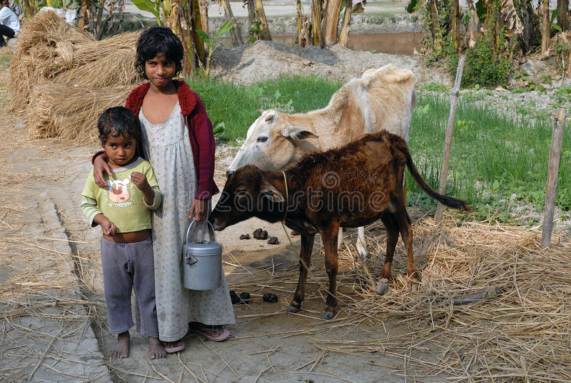 скудость Индии сельская стоковые изображения rf