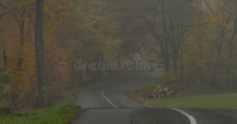 Славная дорога асфальта в темном туманном дне около городка Luhacovice в Моравии стоковое изображение rf