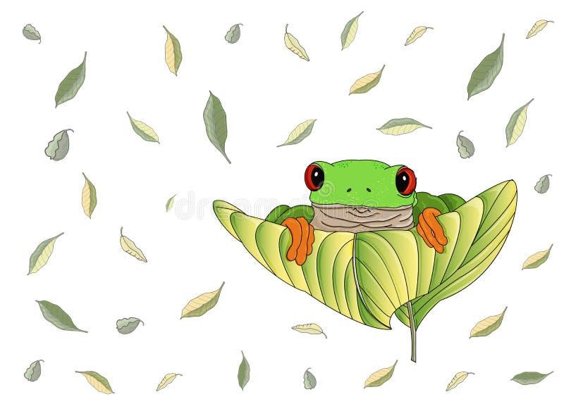 Славная красно-наблюданная зеленая лягушка с оранжевыми ногами и пальцами ноги сидит и смотрит вне на больших лист иллюстрация вектора