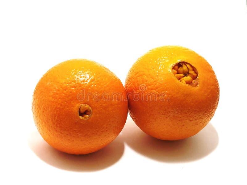 Славные апельсины, который нужно savor стоковое фото