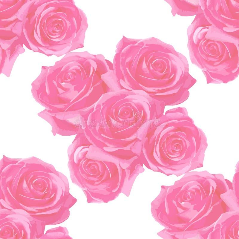 славные розы на чувствительной предпосылке стоковые изображения