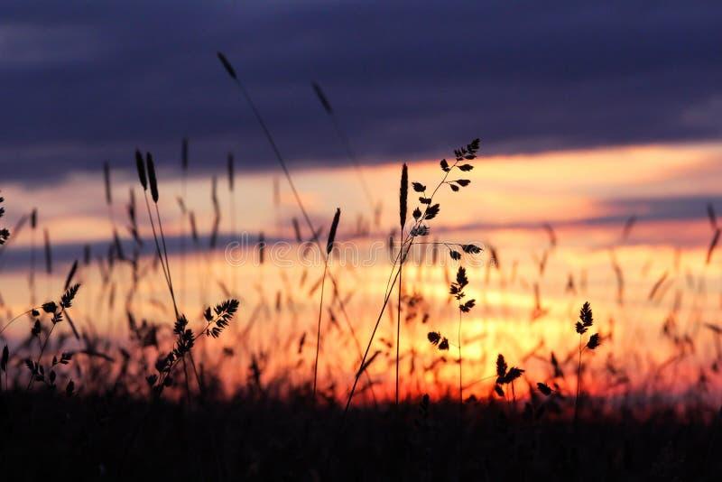 Славный заход солнца стоковая фотография rf