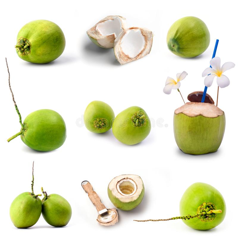 Славный зеленый плодоовощ кокоса изолированный на белизне стоковое фото rf