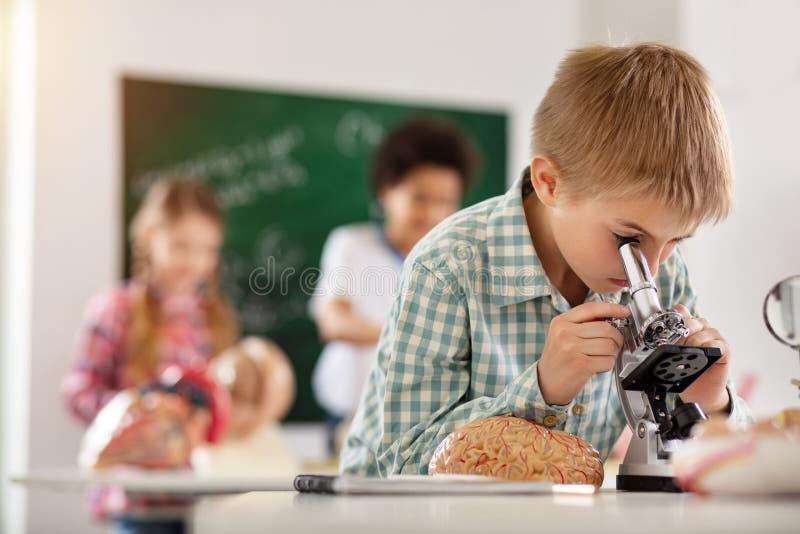 Славный умный мальчик имея урок биологии стоковые фотографии rf