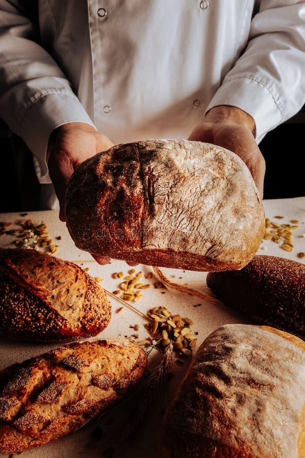 Славный хлеб пшеницы в руках профессионального опытного хлебопека стоковые изображения