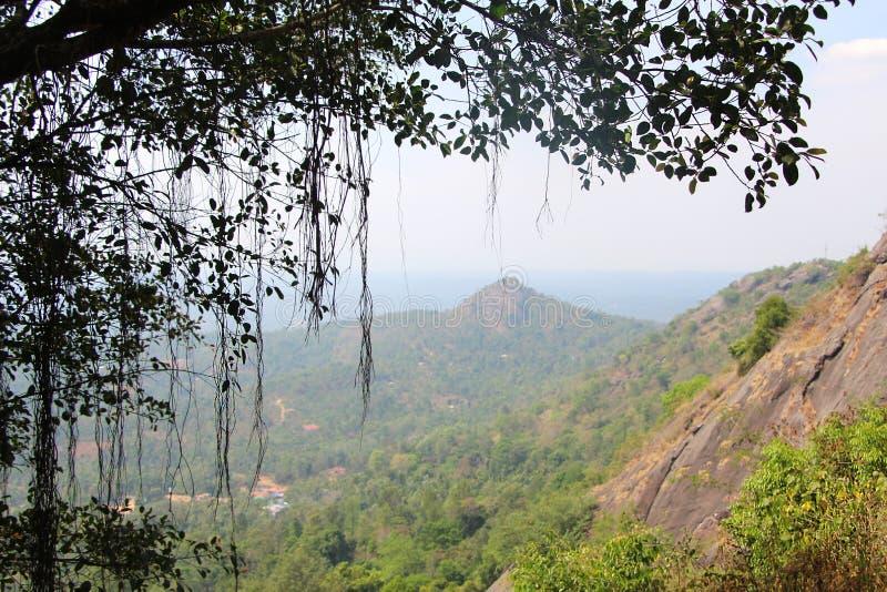 Славный Mountain View тумана стоковая фотография