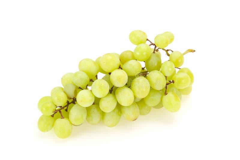 Сладкая зрелая зеленая ветвь виноградины стоковое изображение rf