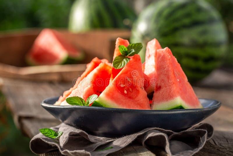 Сладкий и вкусный арбуз в солнечном дне стоковое изображение rf