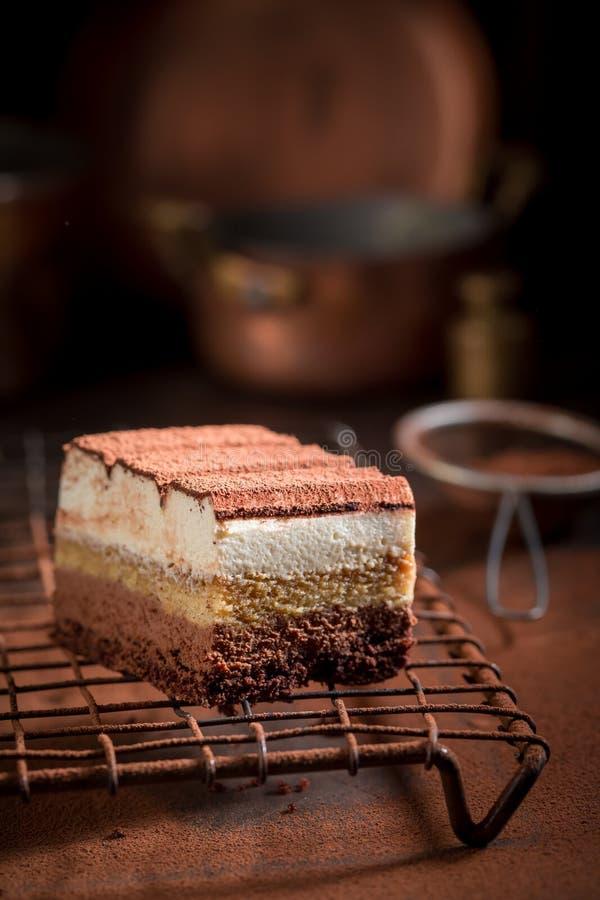 Сладкий торт тирамису с бурым порохом, mascarpone и печеньями стоковые изображения rf