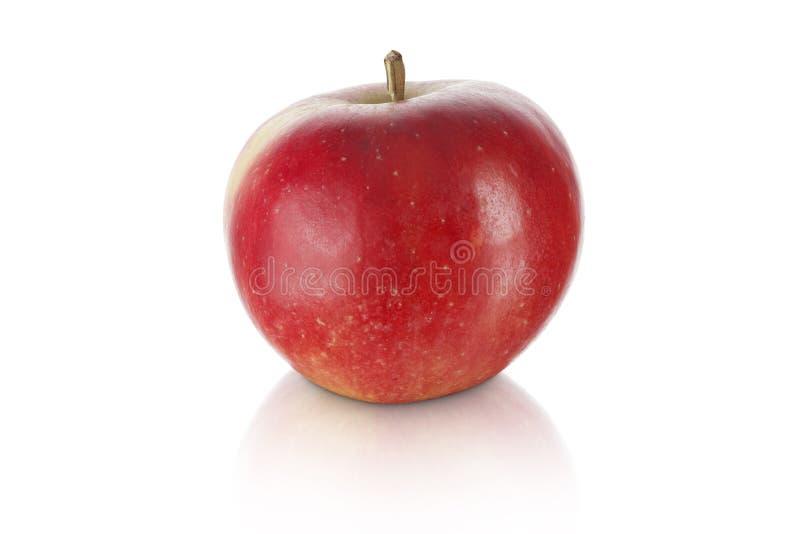 Сладостное красное яблоко   стоковое фото