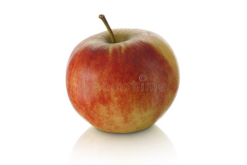 Сладостное яблоко   стоковое фото rf