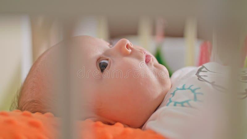 Сладостный младенец лежит на задней части стоковое изображение rf