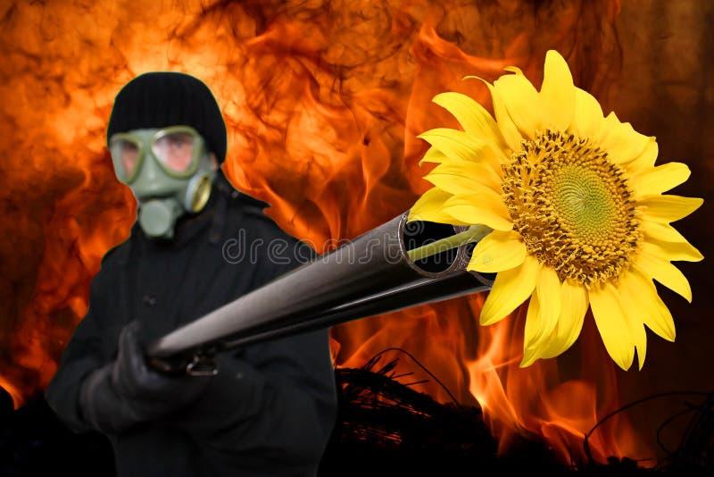 сладостный нежый террорист стоковые изображения rf